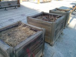 Jardineras en el bulevar de la estación.