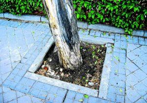 El deterioro afecta a todos los barrios de la capital. /FOTO: R.B.T.