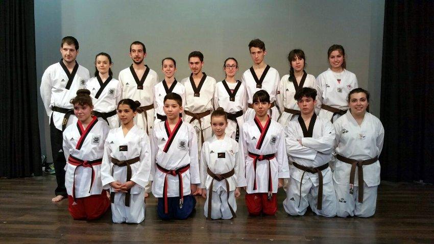 Taekwondo Azofra